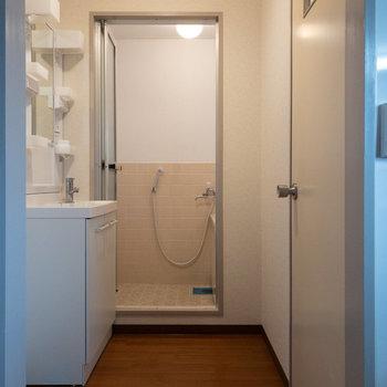 サニタリーへは扉がないので、カーテンをつけても良さそうです。