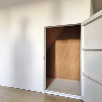 扉の向こうには階段下収納が隠れています。