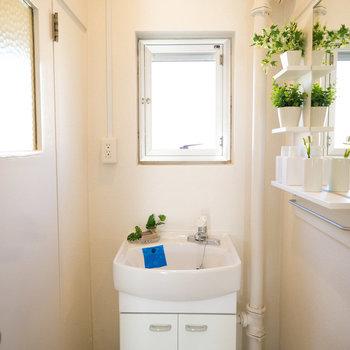 洗面台はトイレとお風呂の真ん中に。右側に収納スペースもある鏡がつけられています。(写真は同間取りのモデルルームです)