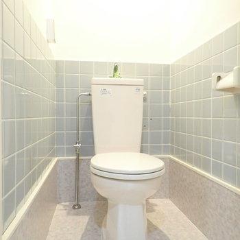 トイレの内装がこだわられています。お部屋の中では1番派手かも。