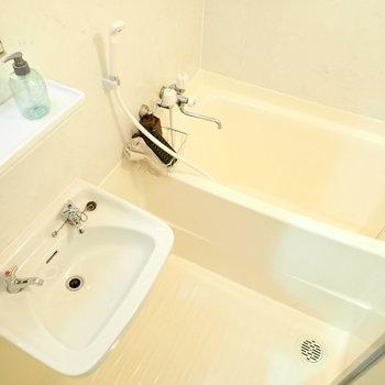洗面台とお風呂は一緒ですね。お掃除は楽そう。