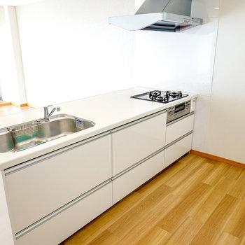 これは手の込んだ料理が作りたくなるオープンキッチンだ…