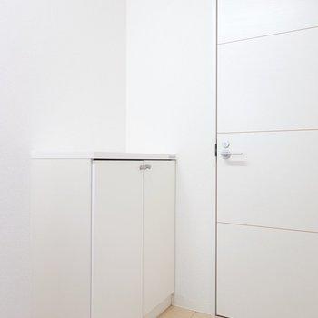 キッチンの反対側には脱衣所へのドア。なんと靴箱がここにあります。