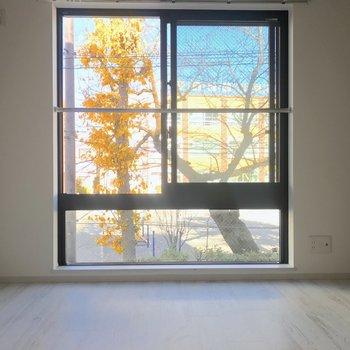 壁の半分以上を占める窓が特徴的。