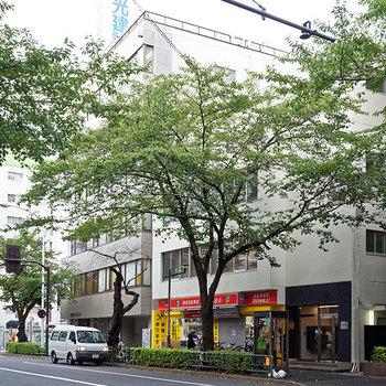 【周辺環境】緑豊かな通りに面しています