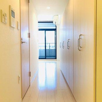 DK側から洋室を見た様子、左手にはトイレ、右手には収納があります。