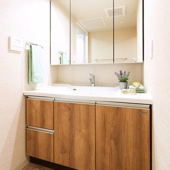 洗面台は鏡も大きくて身支度もしやすそう。※家具・調度品等はサンプルです