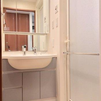 サニタリーはキッチンのある廊下から。立派な独立洗面台〜!※写真は3階の反転間取り別部屋のものです