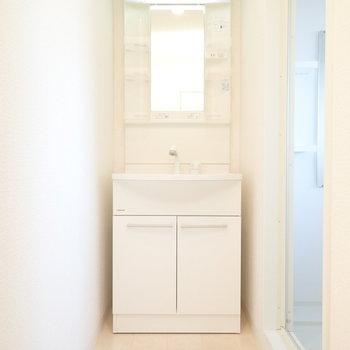洗面台はすっぽりと。タオル置き場も作れそう!