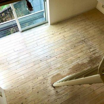 見下ろしてみました。無垢床の木目を見るのってなんだか楽しい。