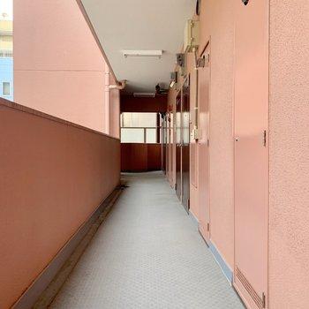 共用廊下は清掃が行き届いているようです♬