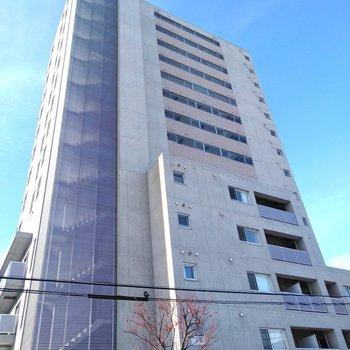 15階建てのしっかりとした外観