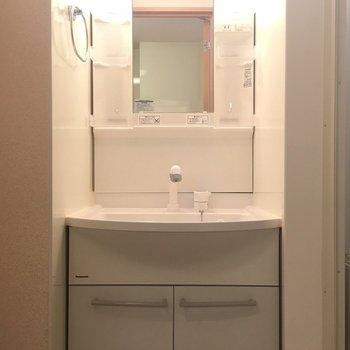 独立洗面台は大きめです。(※写真は1階の反転間取り別部屋のものです)