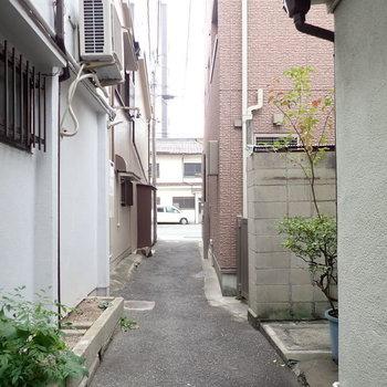 この細道を通ってお部屋に行きます。