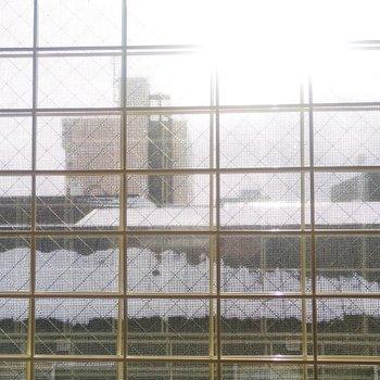窓には転落防止用の網状の柵があります〜