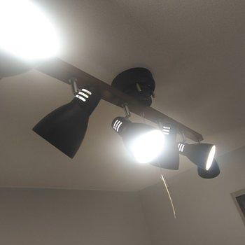 オシャレなスポットライトで照らされています