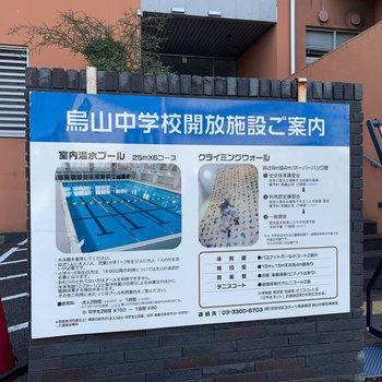 お部屋の近くの学校が、温水プールとボルダリングを一般向けに解放していました。