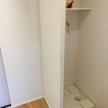 キッチンの後ろ、ロールカーテンを開けると洗濯機置き場。左に冷蔵庫置き場です。