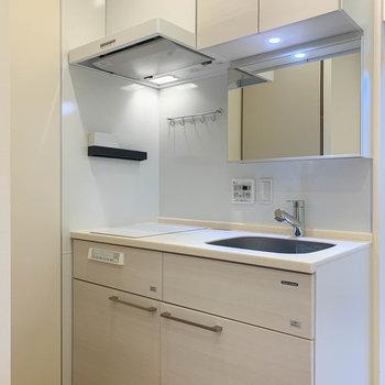 キッチンは洗面台と合体したタイプ。鏡がついています。