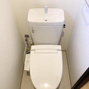 奥のドア、玄関の奥におトイレ。コンパクトですが、ウォシュレットも小窓もあります。