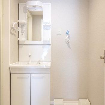 脱衣所正面には棚付きの洗面台と洗濯パン。