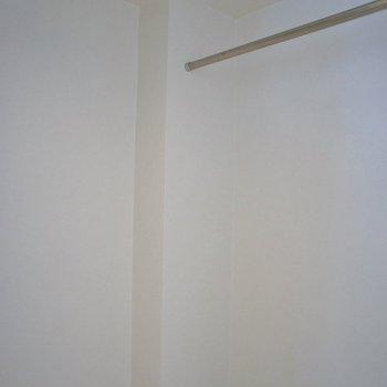 ウォークインクローゼットは広々め!。※写真は同タイプの別部屋のもの