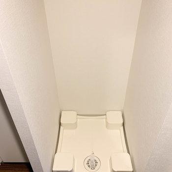 玄関横に洗濯機置き場が※写真は9階の同間取り別部屋のものです
