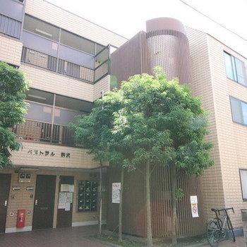 パストラル駒沢