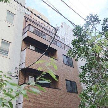新橋5丁目マンション