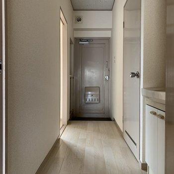 廊下を渡ってもう1つの廊下へ。