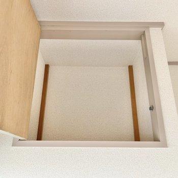 【玄関側洋室】収納は小さいのと、