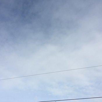 上を見上げると一面の青空。