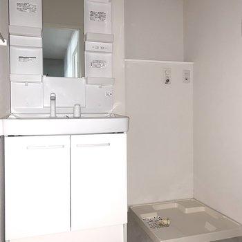 入って正面にシャンプードレッサーとお隣に洗濯機置場。(※フラッシュ撮影です)