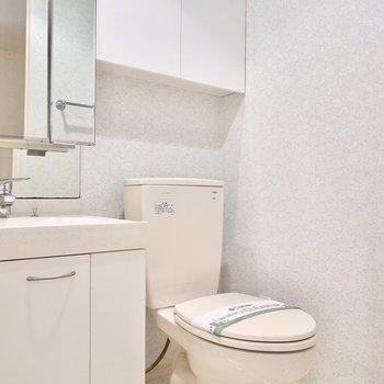 洗面台のすぐとなりにはおトイレ。壁には収納棚もあります。