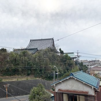 少し目線を振ると緑に囲まれたお寺が見えます。