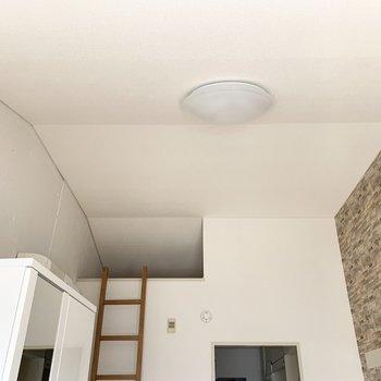 両サイドの壁とのぼっていく天井のシルエットが素敵だな〜。