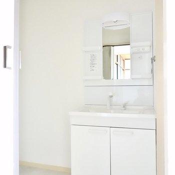 脱衣所に入って正面にはシャンプードレッサー仕様の洗面台。