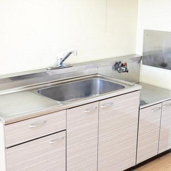 調理担当は私。洗い物はあなた。コンロは持ち込み式です。