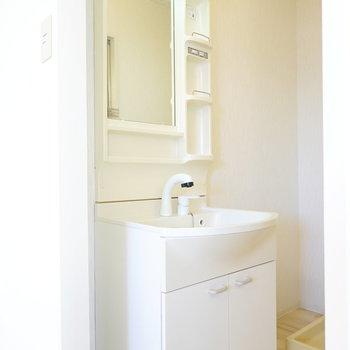 左手には使いやすい棚付きの洗面台。