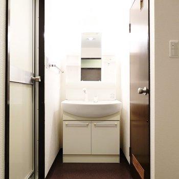 脱衣所入って正面には棚付きの洗面台。