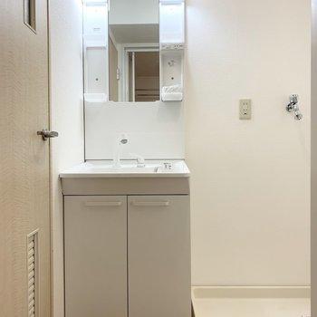 開いた方のドアの中にはユーティリティ。シャンプードレッサーと洗濯機置場が並んでいます。