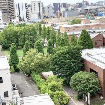 西側には緑豊かな景色が広がっています。