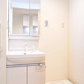 脱衣所には洗面台と洗濯機置場。大きな鏡で毎朝の身支度が捗りそう。(※写真は2階の同間取り別部屋のものです)