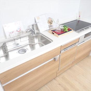 調理スペースもシンクも広さがあります!自炊らくらく!