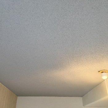 天井はコンクリ打ちっぱなしです。※写真は同タイプの別部屋