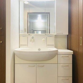 大きめな洗面所。収納もたくさんあって使いやすそう。