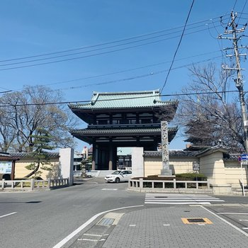 大きめのお寺もいくつか。街にも商業施設が多く、住みたい街ランキング1位なのも納得。
