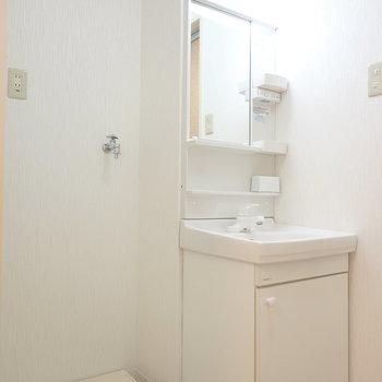 入って左手には洗面台と洗濯機置場。