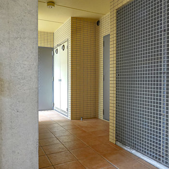 玄関前の共用部。右手の壁が洋室から見えていた壁です。