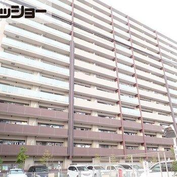 サンクレイドル志賀本通1408号